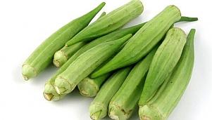 Зеленчукови насаждения