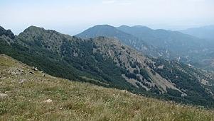 Източни Родопи, Стамболово